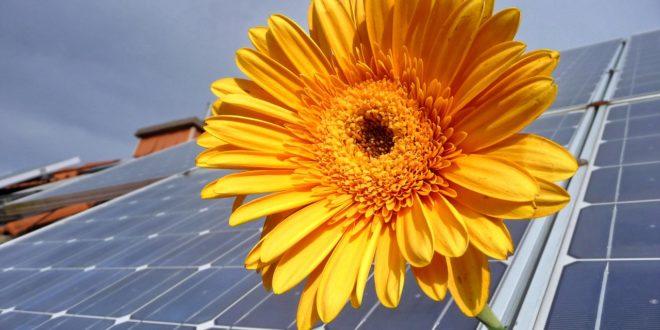 A napenergia mára a történelem legolcsóbb áramforrása