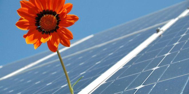 Miért tavasszal termelnek a legtöbbet a napelemek?