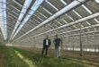 Spárgát termelnek a napelemes üvegházban