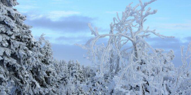 Az utolsó jégkorszak őshőmérsékleti és csapadékviszonyait vizsgálta a CSFK vezetésével egy nemzetközi kutatócsoport